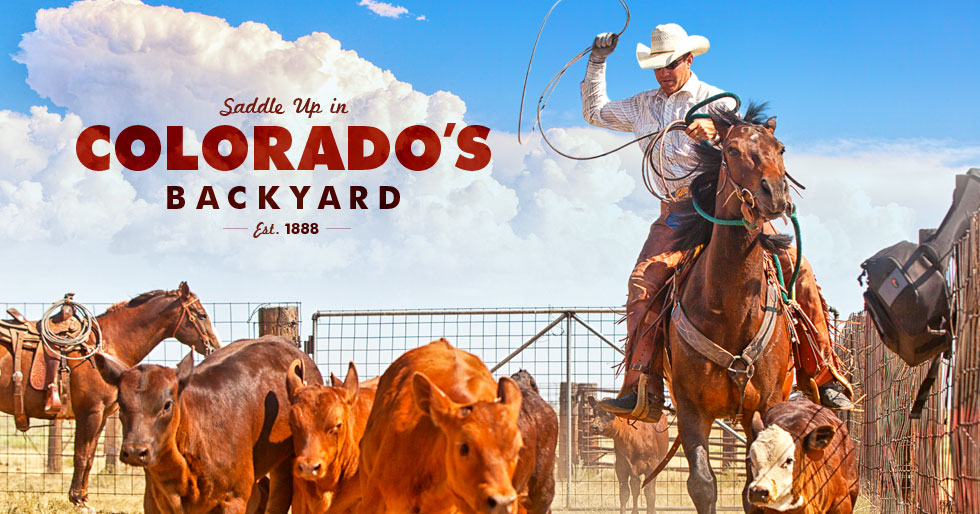 Saddle Up in Colorado's Backyard - Est. 1888